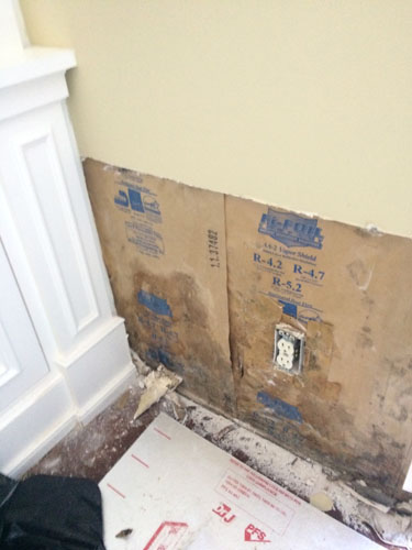 Mold Removal Projects in South Florida