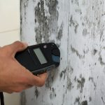 Wondering if You Should Use a DIY Mold Test for My House?