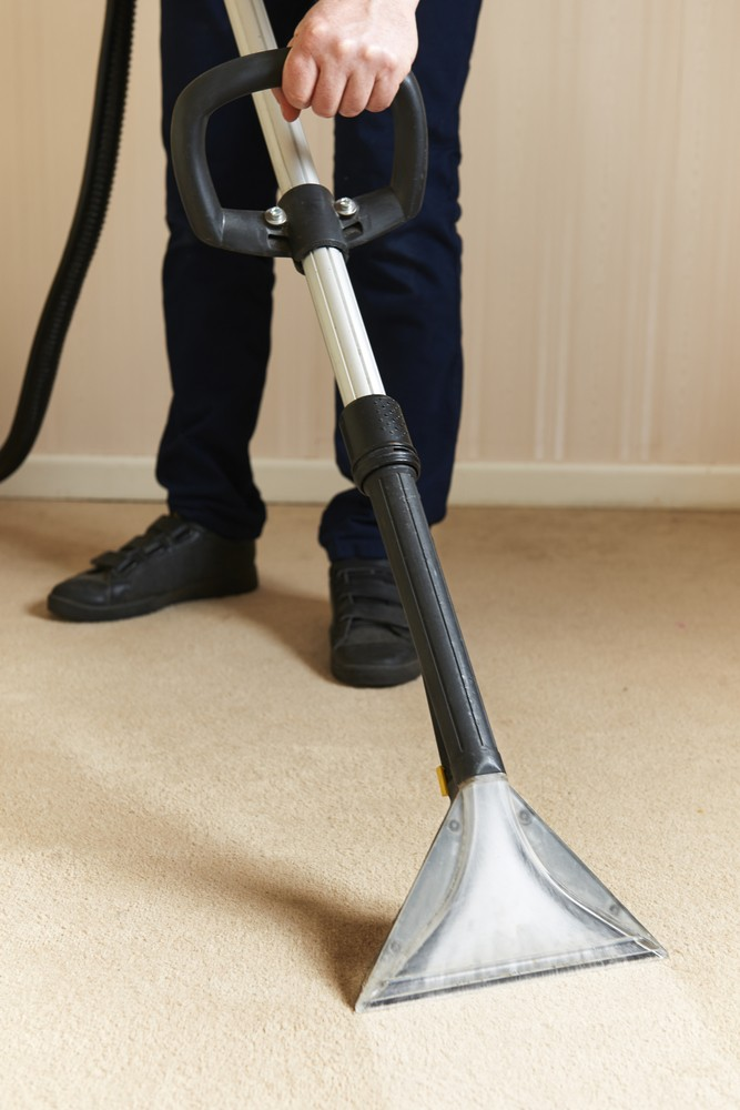 Are You Currently Dealing With a Moldy Carpet Problem?