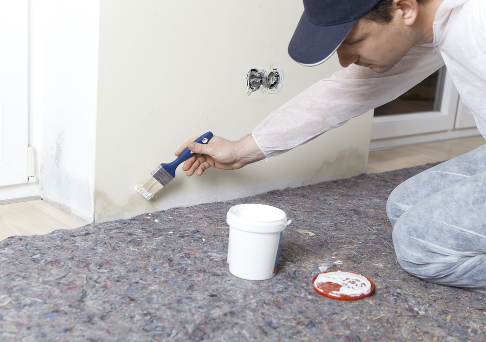 Here's Why Painting Over Mold is Never a Good Idea