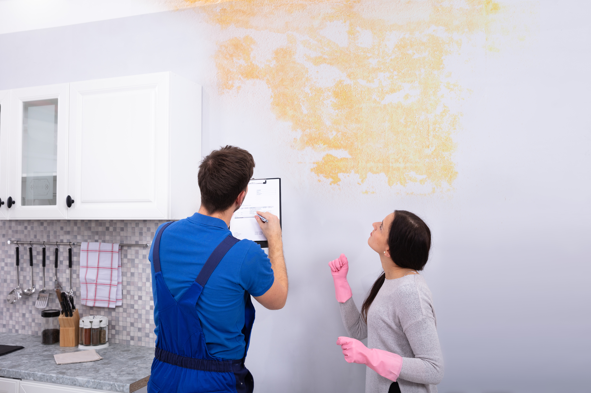 3 DIY Mold Assessment Tips for Homeowners