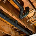 Preventing Mold: How to Identify a Water Leak in Your Home