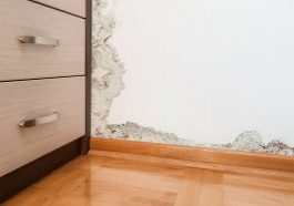 How to Tell if Your Home Water Damage is New or Old